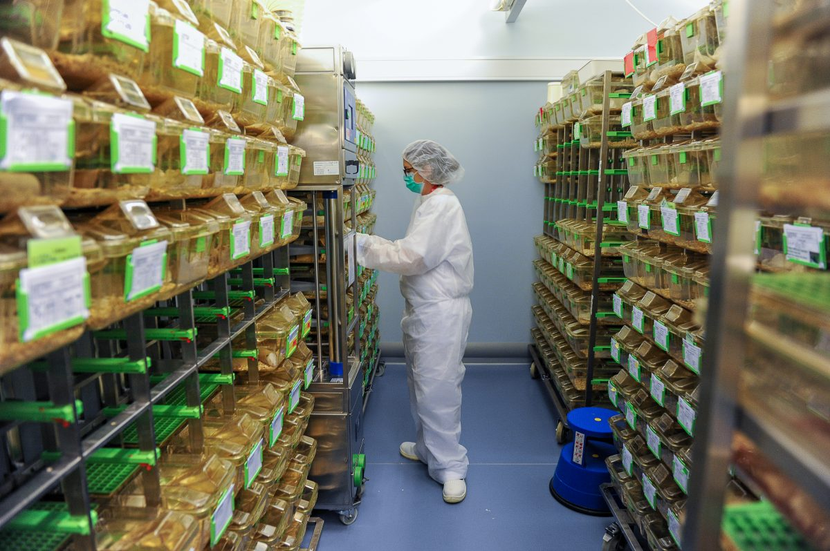 EPFL's Center of Phenogenomics employs a highly qualified team of animal caretakers © Bruno Marquis